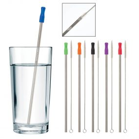 Stainless Steel Straw with Wire Cleaning Brush